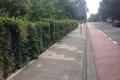 64 - Kokowall geluidscherm Zoetermeer